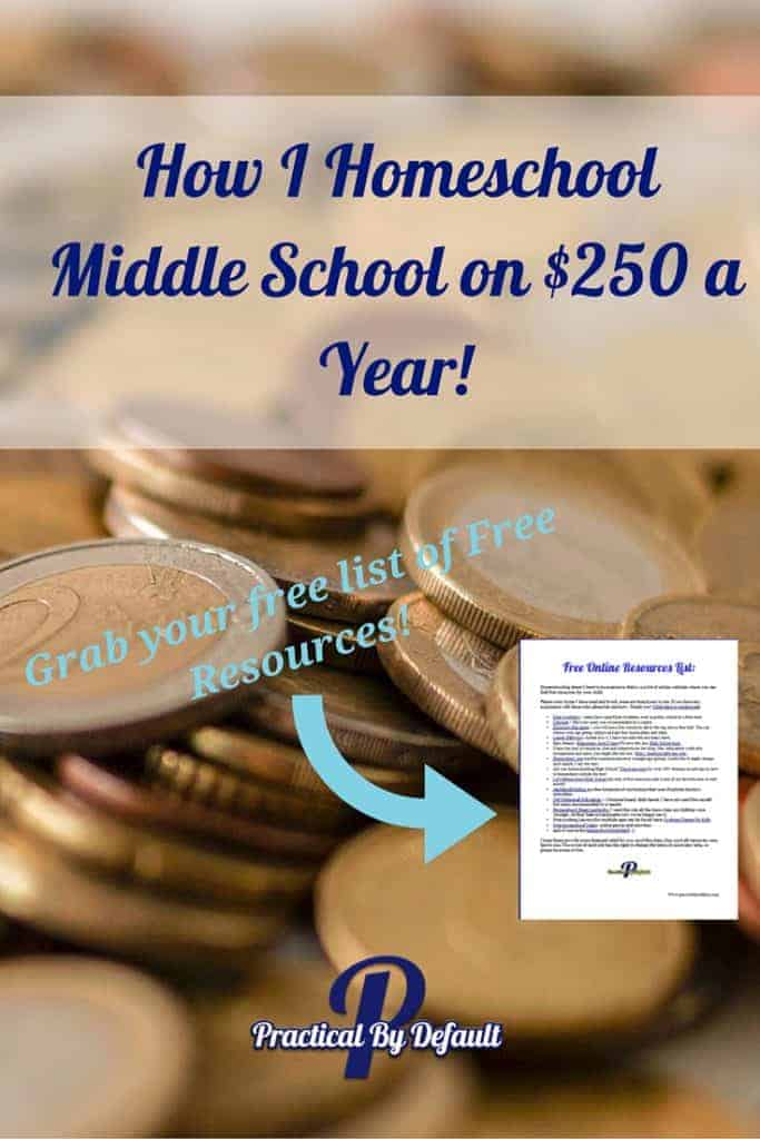 Homeschooling Curriculum for $250 a year? Yes, click through read my exact break down and grab your list of free resources!