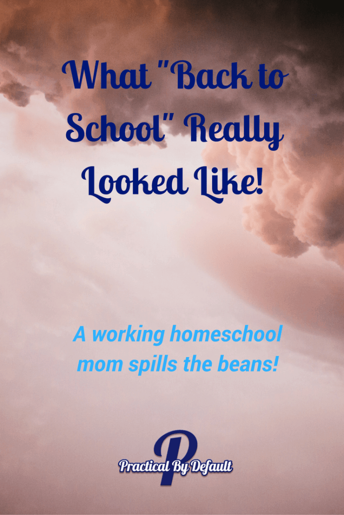 "What ""Back to School"" Really Looked Like! A working homeschool mom spills the beans and it isn't pretty!"